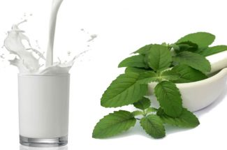 health benefits of tulsi and milk