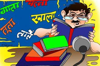 hindi vyakaran me siyasat